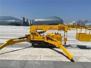 Factory Free sample Light Mobile Crane -