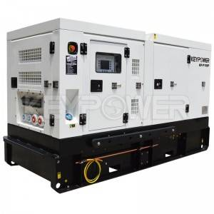 Suitable to Africa countries power 100 kVA Diesel Generator Powered by Perkins