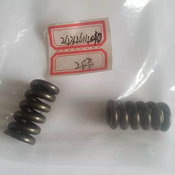 OEM manufacturer Diesel Engine Spare Parts - Injector Spring – Derun detail pictures