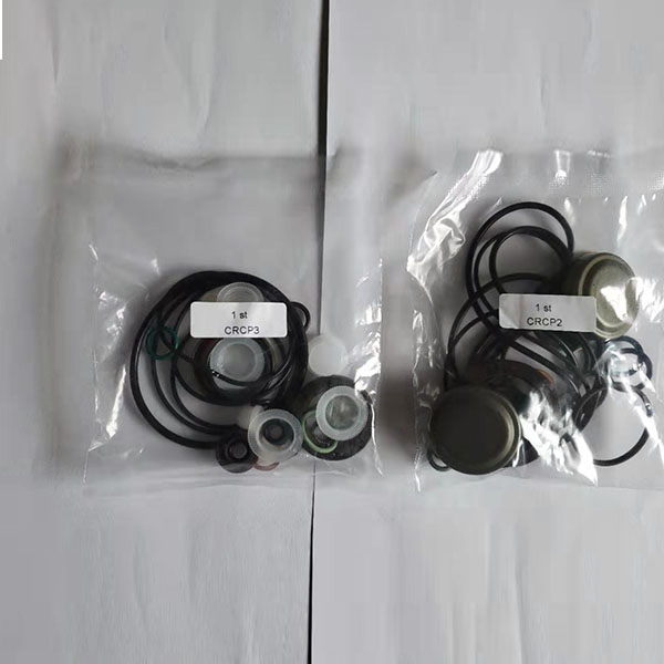 Competitive Price for Solenoid Valve - Common Rail Repair Kit – Derun detail pictures