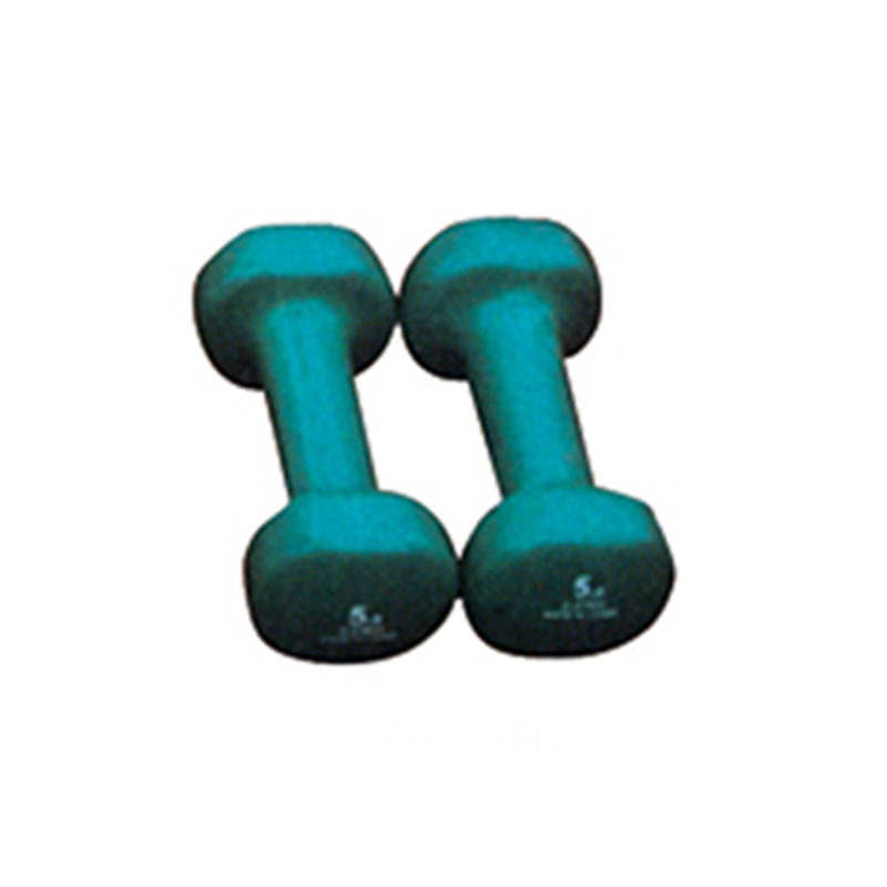 Core Fitness Equipment Cast Iron Dumbbells Non Toxic Home Exercise Dumbbell Set