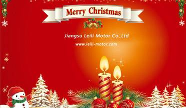 Merry Christmas from Leili Motor