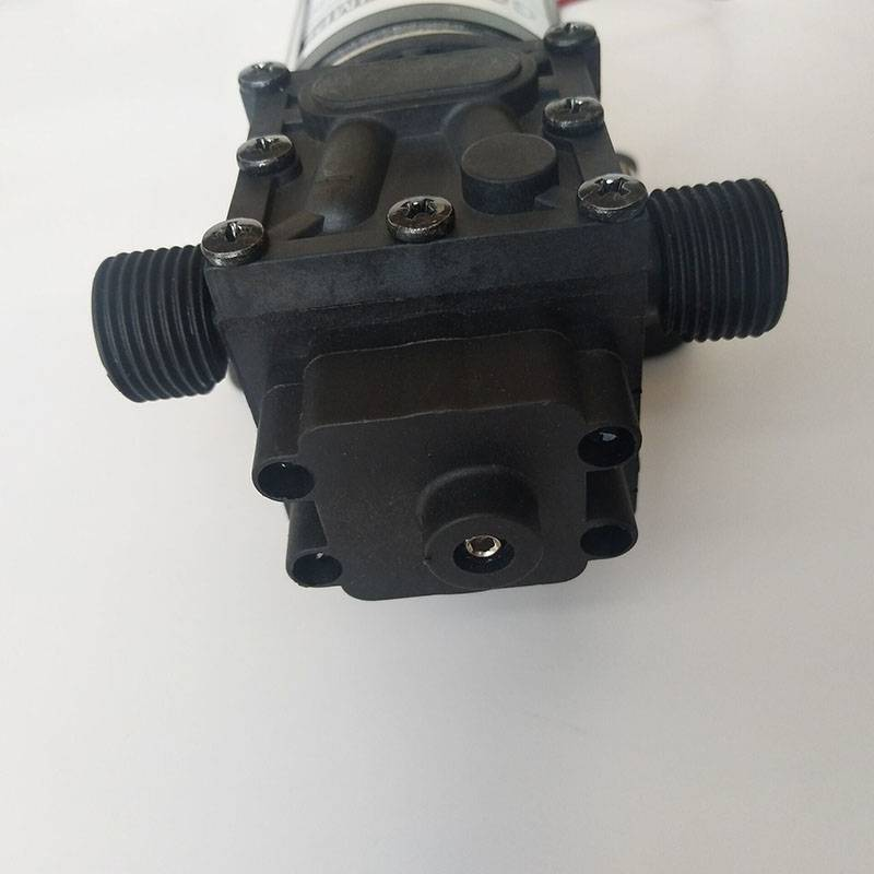 "Gedhe G1 mili / 2 Diaphragm Pumplifesrc Kompak Agricultural 12V / 24V Diaphragm Pump (With 1/2 ""njaba Thread Inlet / Outlet)"