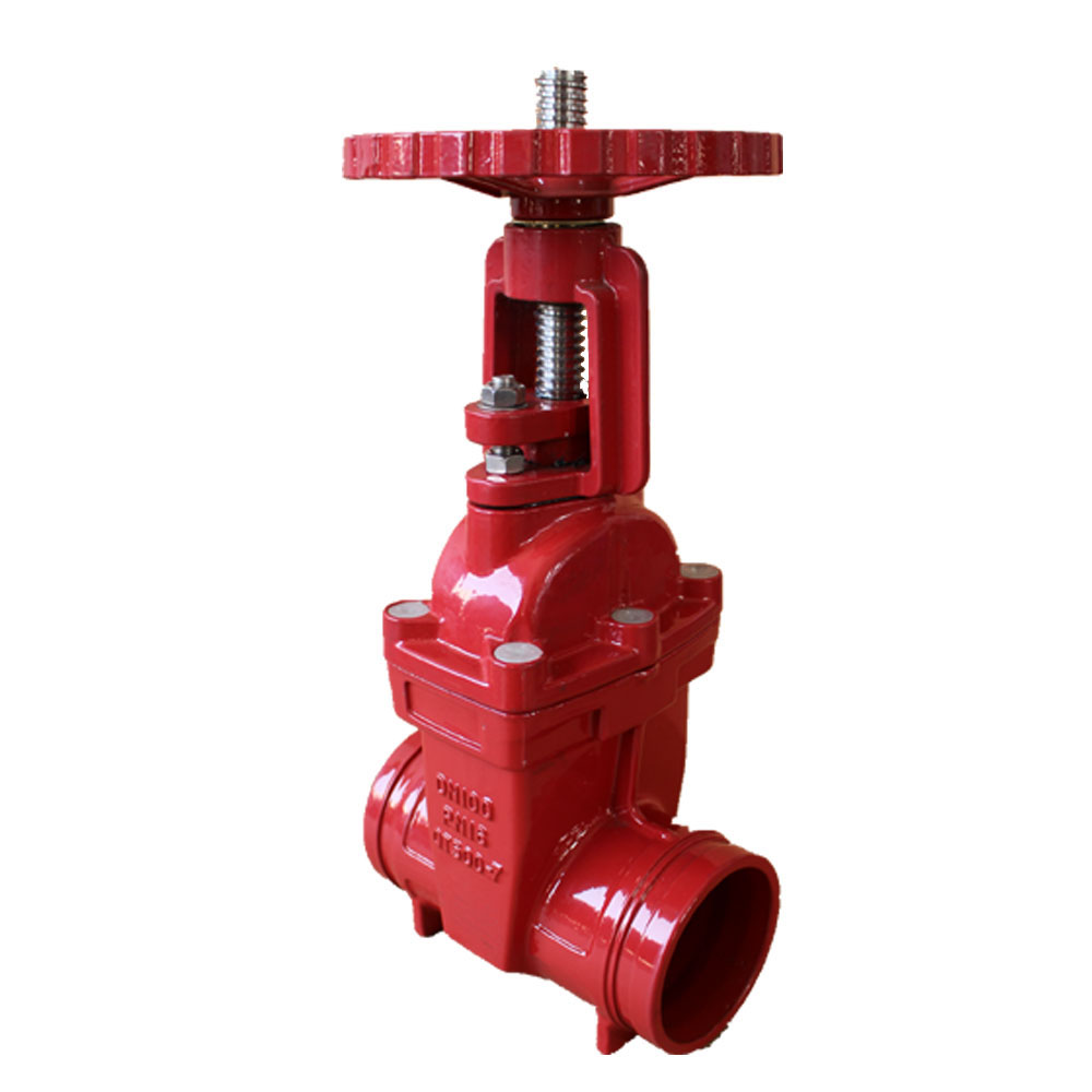 Discount Price Grooved Resilient Swing Check Valve Featured Image
