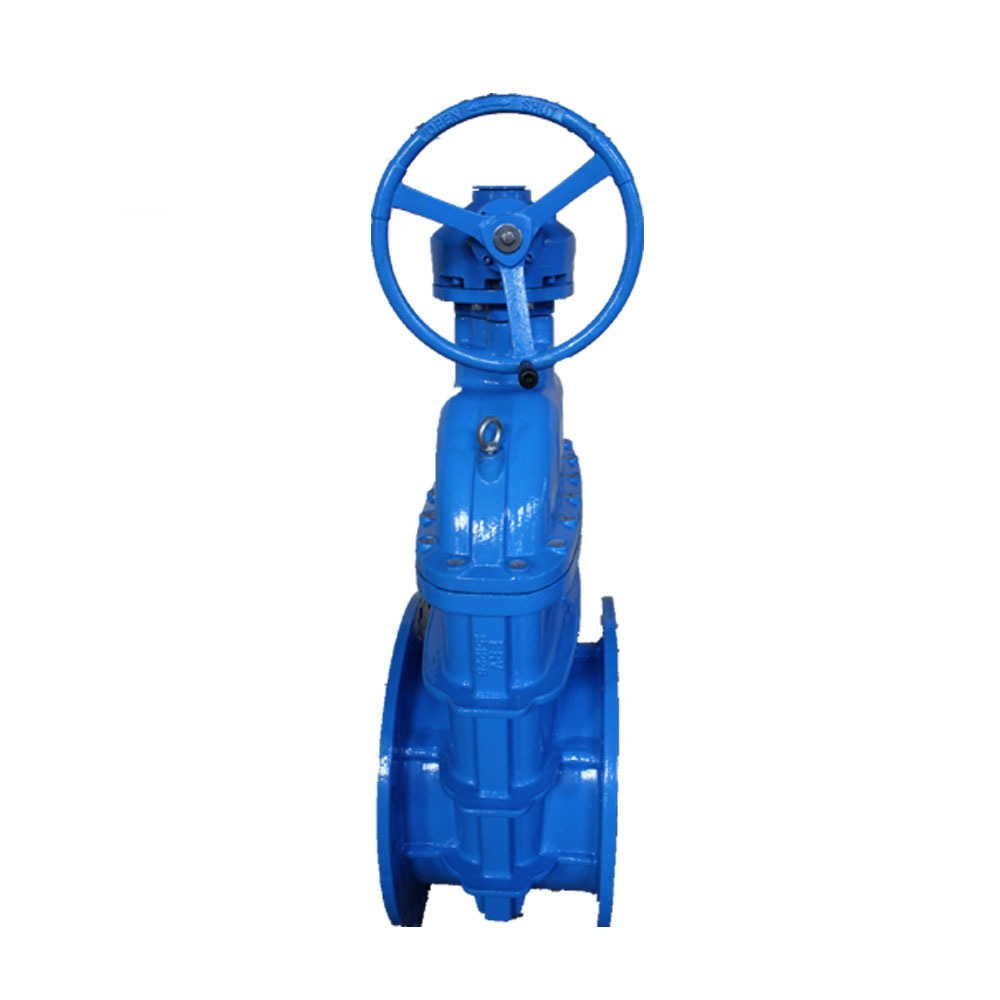 large diameter gate valve Featured Image
