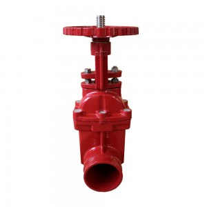 Discount Price Grooved Resilient Swing Check Valve