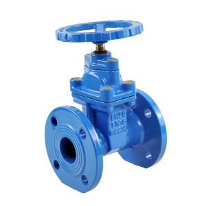 Non-rising resilient Gate valve