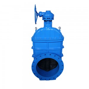 large diameter gate valve