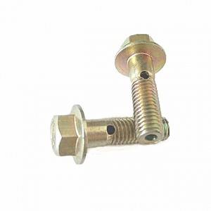 China supply customized bolt non-standard bolt