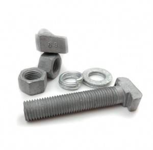 Factory Price T-head bolts halfen bolt