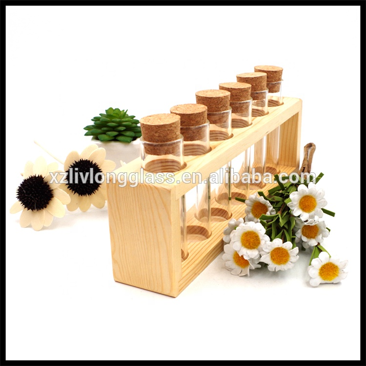 NEW Glass Tubes Wood Rack 6 Spice Jars with Cork Lids