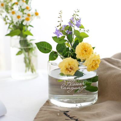 hot sale small hole glass flower jar Nordic modern minimalist transparent glass bottle 200ml