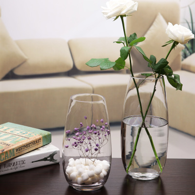2017 wholesale priceHermetic Glass Storage Jar - Simple transparent glass vase hydroponic glass green rose flower arrangement rich bamboo living room decoration wholesale – LIVLONG