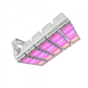 300W Full Spectrum Led Grow Light 300watt Greenhouse Grow Lamp Cob Horticulture Hydroponic Light for Indoor Plant full Spectrum LED Grow Lights Bar