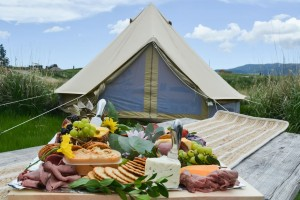 Factory supplied Outdoor Party Tent -