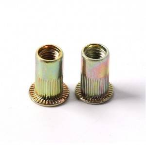 Steel Twist-Resistant Rivet Nuts