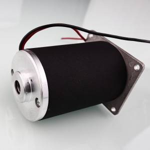 China Factory for Dc Motor For Treadmill -