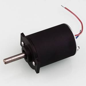 Massager motor,Ø51mm PMDC motor,ZYT-51SR-10-7