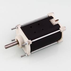 Free sample for Motor Synchronous For Lawn Mower -