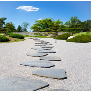 Good User Reputation for Garden Stepping Stone -