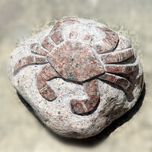 Wholesale Dealers of Home Decoration Water Feature - Crab sculpture on rock – Magic Stone