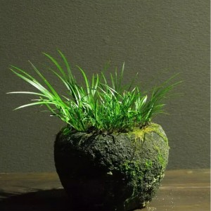 Wholesale cheap price small rock stone pot for decor