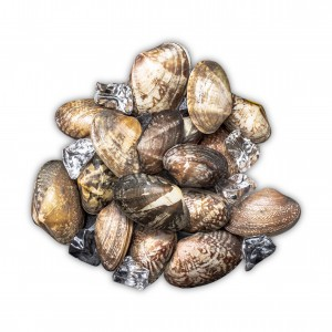 Reasonable price for Apo Fillet Supplier - clam – Makefood