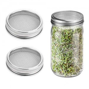 16OZ Wide Mouth Glass Mason Jar With Stainless Steel Sprouting Lids