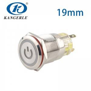 5v led push button 19mm