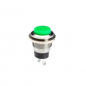 Push Button Switch DS318