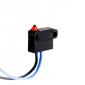 Waterproof Micro switch KW2-1C-01-M1