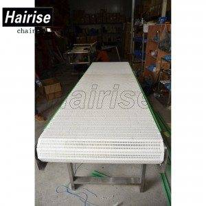 Hairise Straight Conveyor with Modular Belts(Har400)