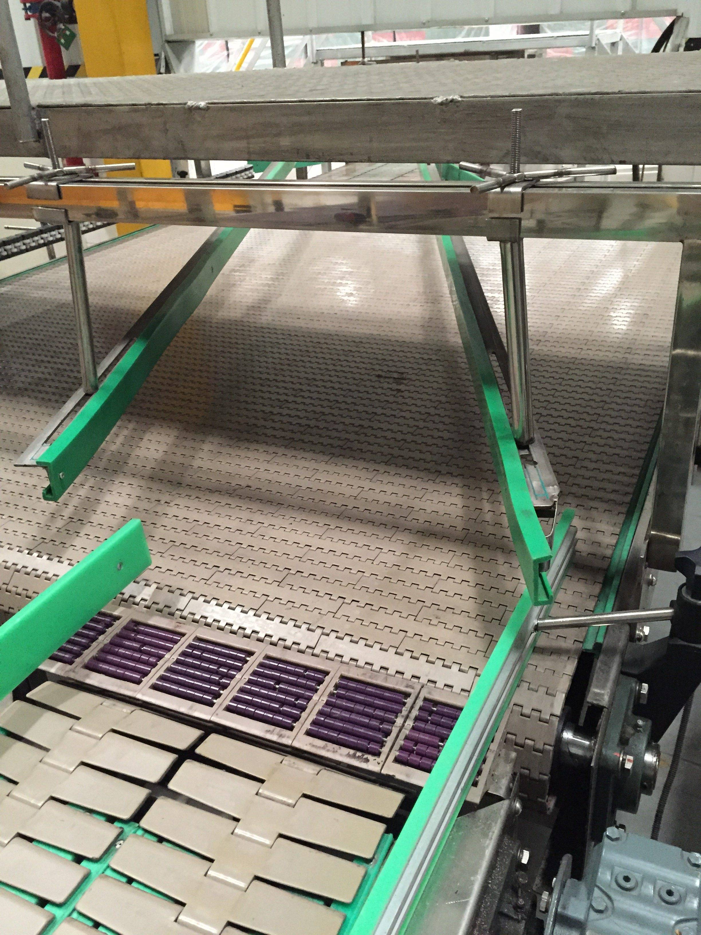 Hairise Slat Top Chain Conveyor with FDA