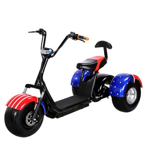 China Gold Supplier for Aluminum Folding Scooter -