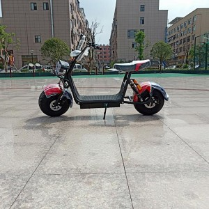 2019 Newest 40km/h fast speed 1500w citycoo electric scooter