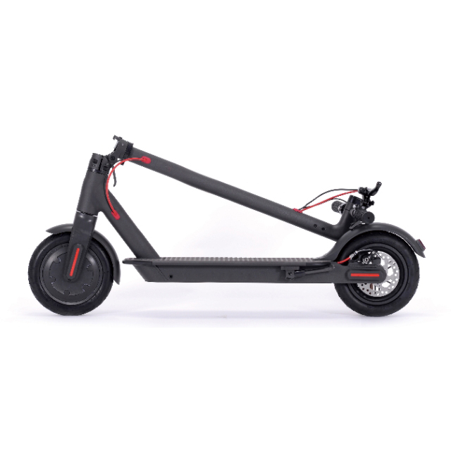 Hot Sale for Long Board Skateboard -