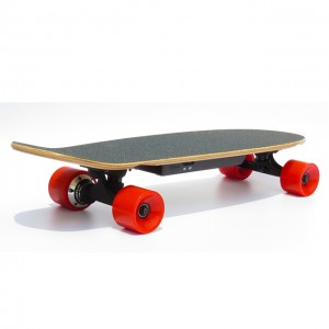 Custom longboard electric skateboard with mini cruiser wood skateboard