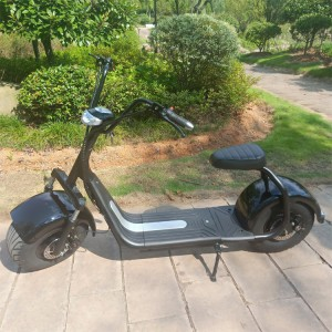 New fat tire 2 wheel citycoco electric scooter 1500w