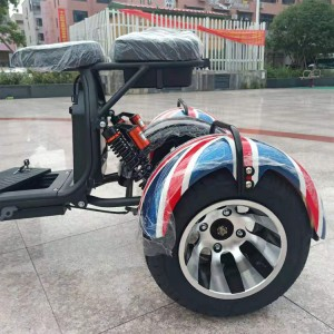 2019 hot selling 3 wheel 8 inch electric scooter citycoco