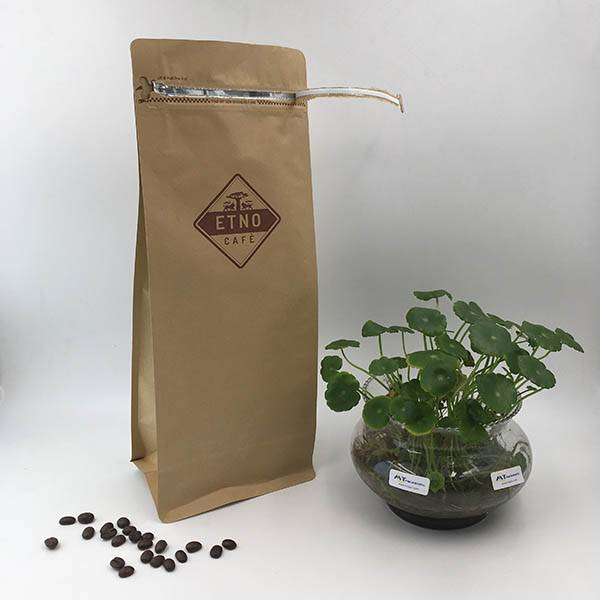 Renewable Design for Big Brown Kraft Paper Bag -  1kg Brown Kraft Flat Bottom Pouches with Tear Off Zipper with Valve – MTPAK detail pictures