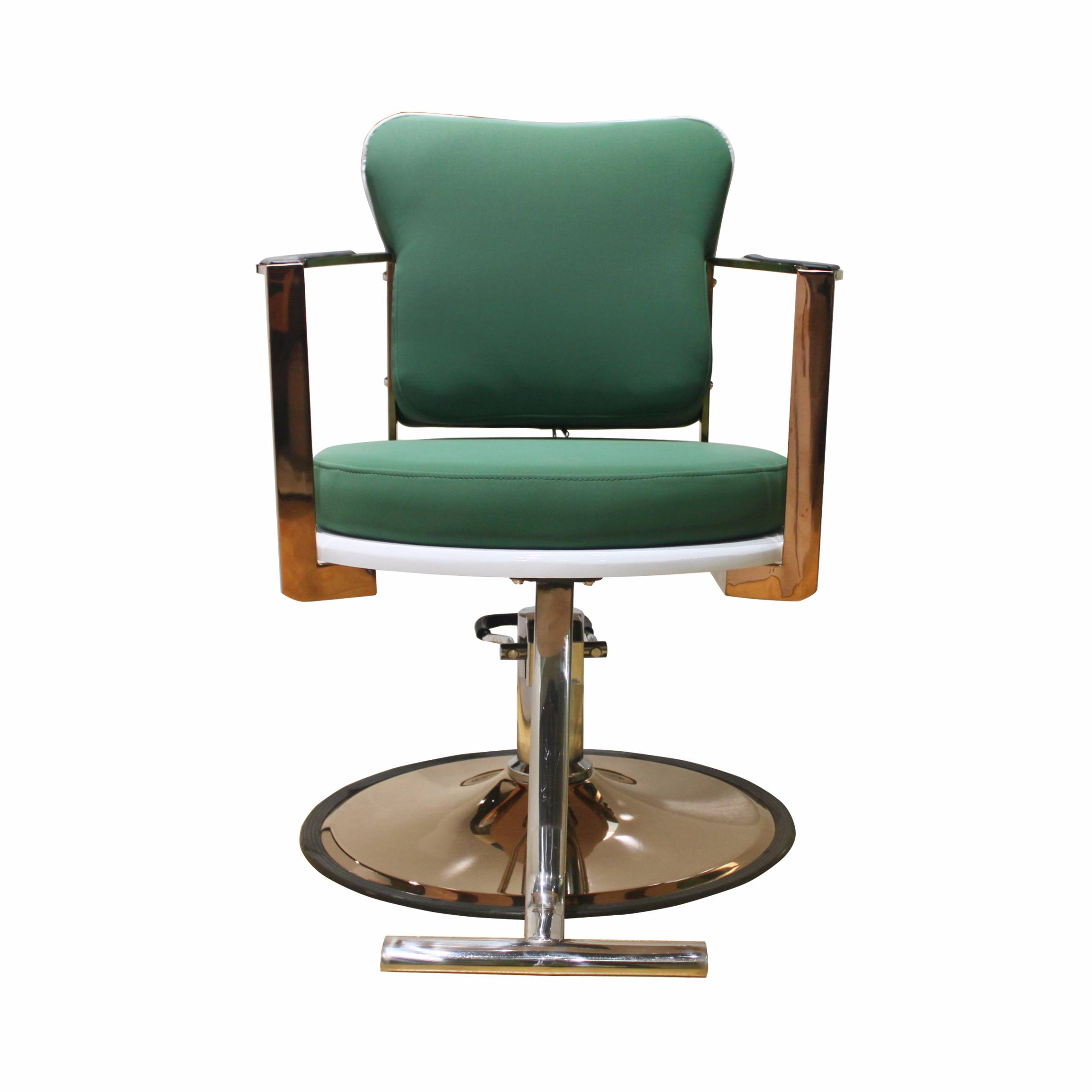 New design and fashionable styling chair for salon