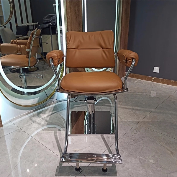 New modern styling chair salon chair salon furniture for sale