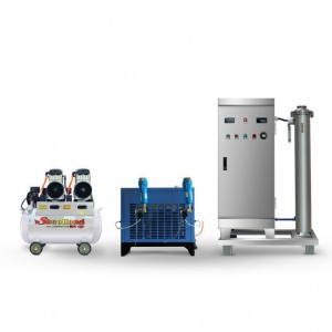 30g/H Ozone Generator for Food Packing Room Disinfection