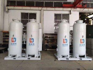 Food nitrogen machine-ldh-1000