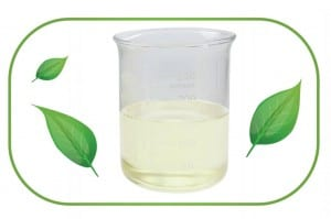 Quality Inspection for Phytosterol Powder -