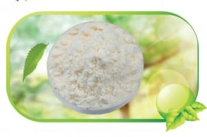 Bitamina Natural E lehorra Powder