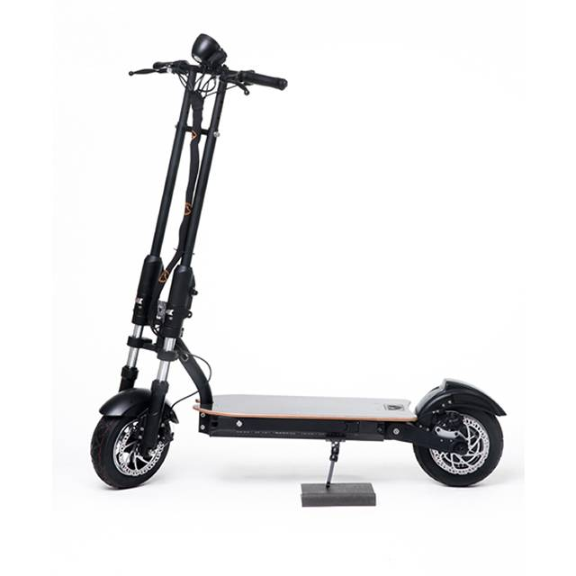 Electric Scooters GCM-1003 Featured Image