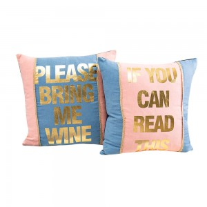 Top Suppliers China Colorful Throw Pillows, Coshion Cover, Beauty Pillows