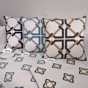 Embroidery with canvas wool Pillow Series-HS21367