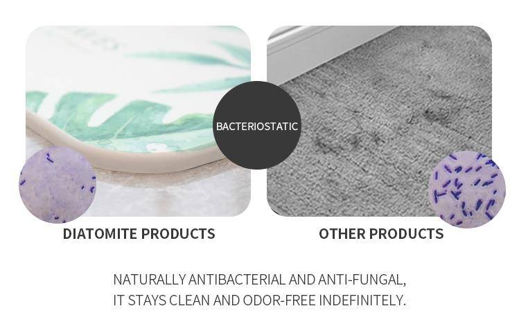 The Application Of Diatomite Bath Mat